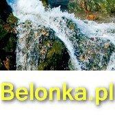 Belonka