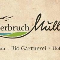 Oderbruch Müller