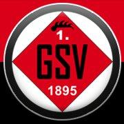 1. Göppinger Sportverein 1895 e.V.