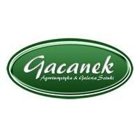 Siedlisko Gacanek - Bory Tucholskie