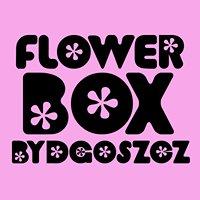 Flower Boxy Bydgoskie