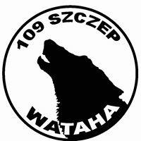 """ZHP, 109. Szczep 'Wataha"""" w Jordanowie Śląskim"""