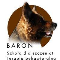 Szkoła Baron