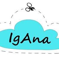 IgAna