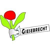 Giesebrecht Garten & Pflanzen