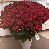 Kwiaciarnia Aksamitka