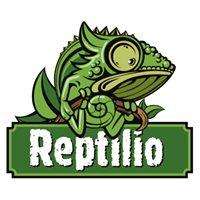 Reptilio Katowice