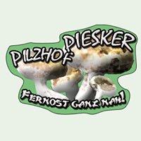 Pilzhof Piesker
