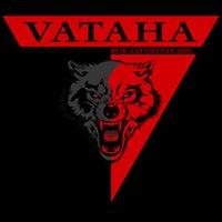 Vataha Combat Sports and Selfdefence Institute