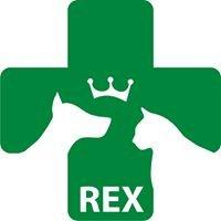 Przychodnia Weterynaryjna REX