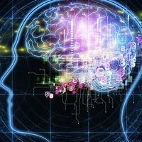 "Gabinet fizjoterapii i EEG Biofeedback ""Fizjo-Brain"""