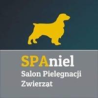 Salon Pielęgnacji Zwierząt SPAniel & Pracownia Cztery Łapy