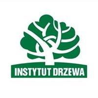 Instytut Drzewa