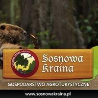 Sosnowa Kraina - Gospodarstwo Agroturystyczne, Supraśl