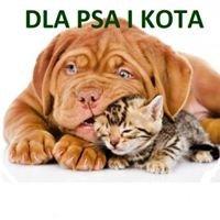 Przychodnia Weterynaryjna Dla Psa i Kota