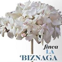 Finca La Biznaga