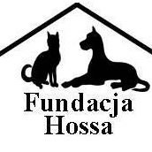 Fundacja  Hossa