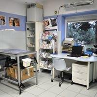 Przychodnia Weterynaryjna Fundacji Medor