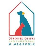 Ośrodek Opieki nad Zwierzętami w Węgrowie k/ G-dza