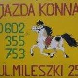 Stajnia Hucuł Łódź