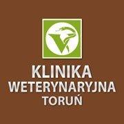 Klinika Weterynaryjna w Toruniu