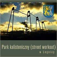 Park kalisteniczny w Legnickim Parku Miejskim
