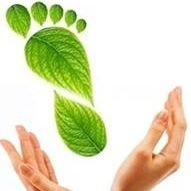 Qi Wellness- profilaktyka zdrowia i urody, stylizacja paznokci