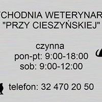 """Przychodnia weterynaryjna """"przy Cieszyńskiej"""""""