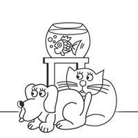 Kleintierpraxis Catrina Geret Tierarzt