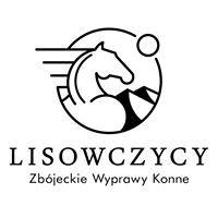 Lisowczycy, wyprawy konne