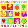 Community Fruit Harvesting