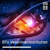 Center for Diagnostik DTU