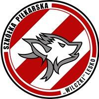"""Szkółka Piłkarska """"Wilczki"""" Lesko"""