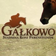 Stadnina Gałkowo