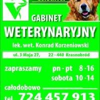 Weterynarz Krasnobród Gabinet Wet Goldenvet lek. wet. Konrad Korzeniowski