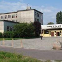 Szkoła Podstawowa nr 16 im. Tadeusza Kościuszki w Pabianicach