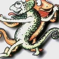 Studio Tańca Kameleon
