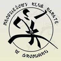 Młodzieżowy Klub Karate Shinkyokushin w Gromniku