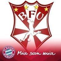 Bayernfans-United