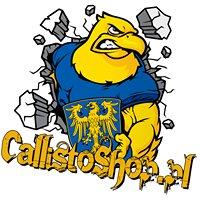 Callistoshop