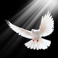 """Katolicka Wspólnota Odnowy w Duchu Świętym """"Benedictus"""" w Radomiu"""