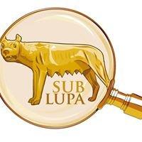 Wydawnictwo Naukowe Sub Lupa