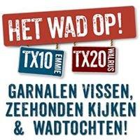 TX10 - TX20   Het Wad op - Garnalen vissen en zeehonden kijken op Texel