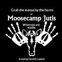 Moosecamp Jutis