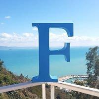 Fondation Friedrich Naumann pour la Liberté - Tunisie