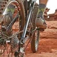 Bike Forest