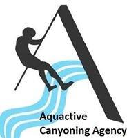 Aquactive