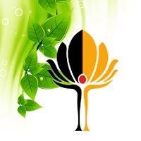 Drzewo Życia Gabinet Terapii Naturalnych