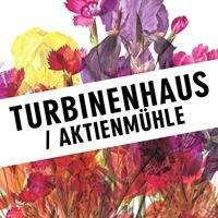 Turbinenhaus / Aktienmühle