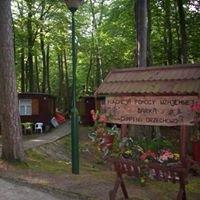 Ośrodek Szkoleniowo - Wypoczynkowy w Orzechowie